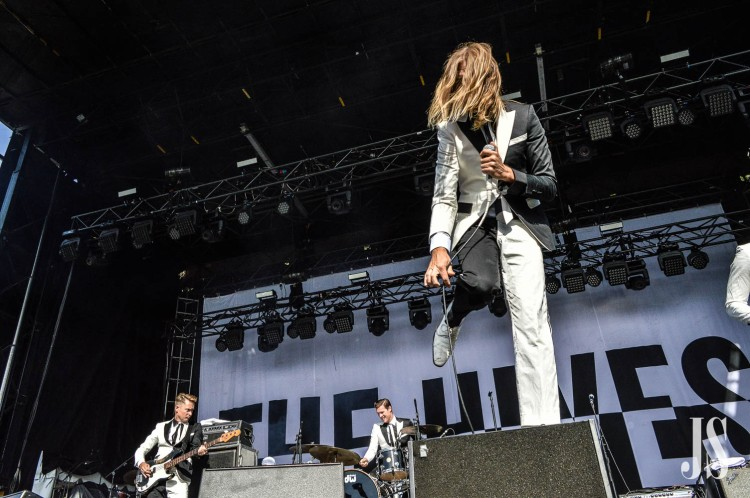 the-hives-10-of-35