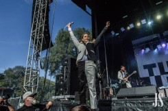 the-hives-29-of-35