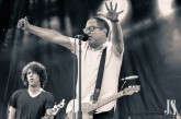 the-hold-steady-3-of-24
