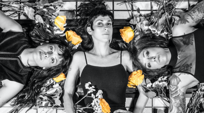The Coathangers take on the NRA in new single